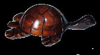 Черепаха 30
