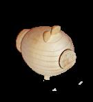 Świnia solniczka