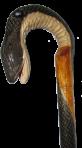 Трость Молодая кобра