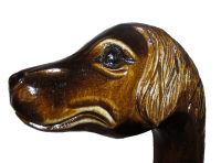 Walking stick Spaniel