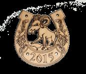Подкова сувенир к 2015 году.