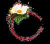Wianek z kwiatem