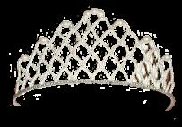 Корона сітка
