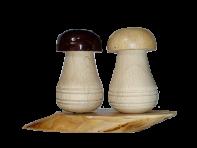 Сільниця грибочки