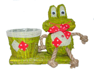 Подвазонник с лягушкой