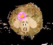 Баранчик з квіточкою